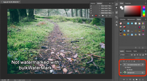 Step 6: Select both layers to align the watermark