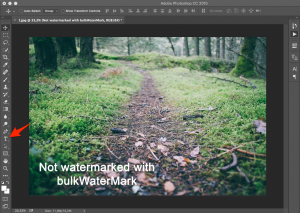 Step 4: Adding a text watermark