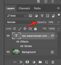 Step 8: Setting the Opacity of the layer