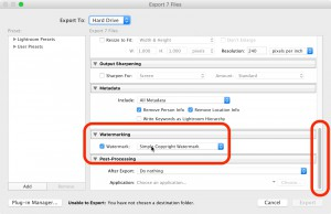 Step 2 + 3: Define your output folder and enable watermarking with a custom watermark