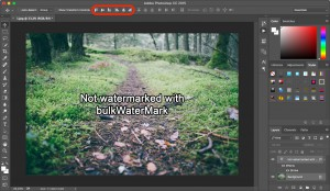 Step 7: Aligning the watermark