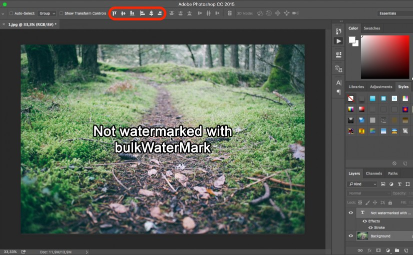 Watermark Pictures with Photoshop