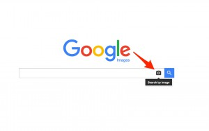 Google Image Search to search watermarked photos